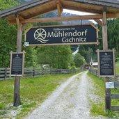D-4295-muehlendorf-gschnitz.jpg